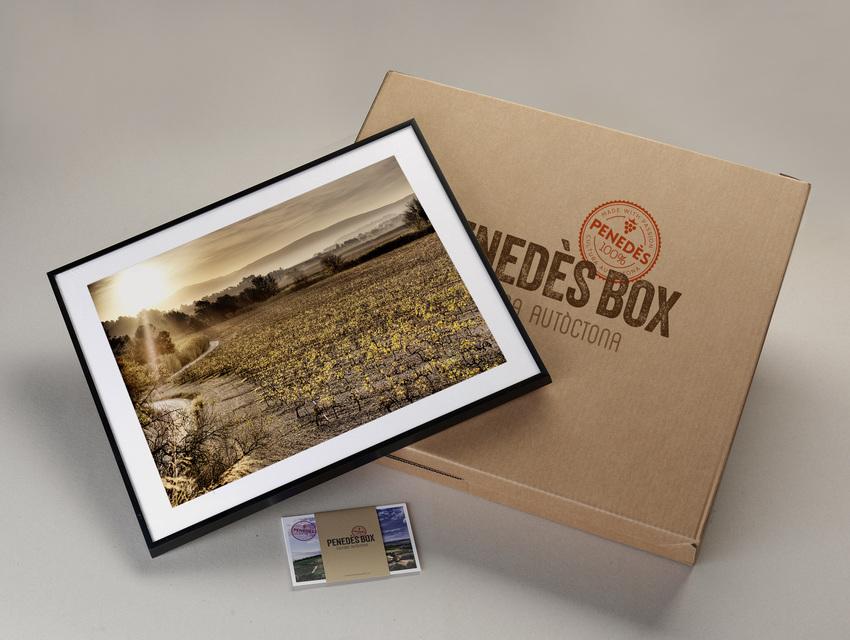 Medium box 13