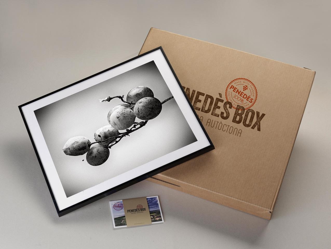 Large box 13 1
